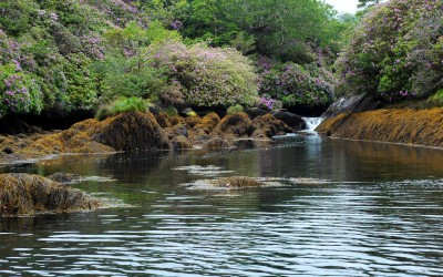 blue-pool-glengarriff